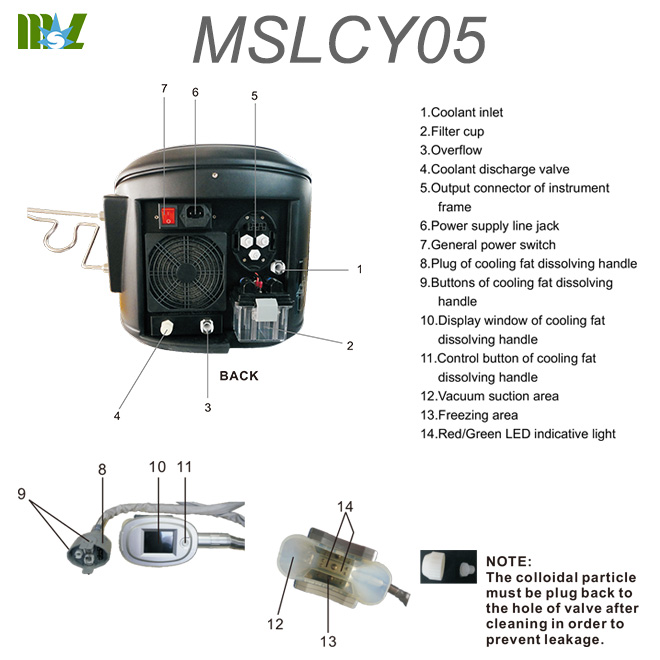 fat freezing MSLCY05